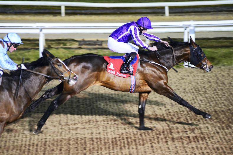 Breeders' Cup Classic still expected to be the 'ultimate goal' for Mendelssohn