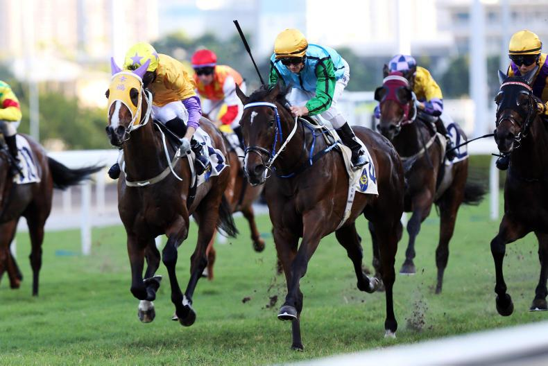 Purton hopes Rise High can demonstrate Group 1 potential in Sha Tin Mile Trophy