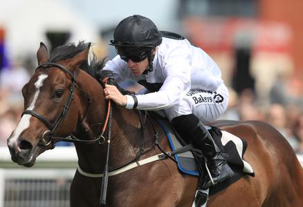 Onwards and upwards for Advertise after July Stakes success