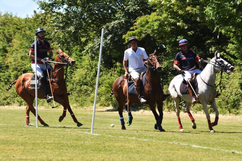 POLO:  Ballindenisk polo action full on