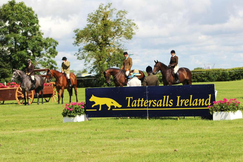 AROUND THE COUNTRY:  Big guns gearing up for Tatts July Show