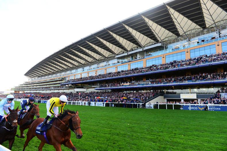 Ascot switches sides in media rights battle