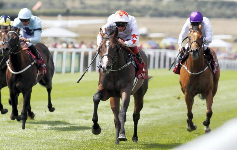NEWMARKET THURSDAY: Advertise makes no mistake