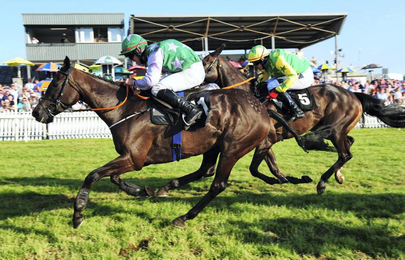 LIMERICK SATURDAY: Cromwell set for two on the bounce