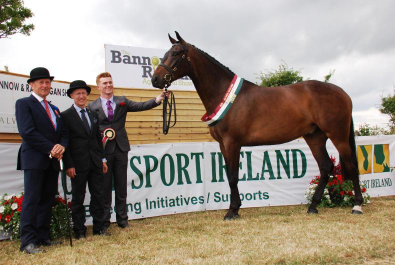 BANNOW & RATHANGAN 2018:  Bullseye on target at Bannow & Rathangan Show