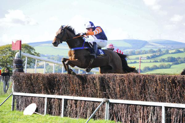 Barry O'Neill brings up a treble at sunny Tinahely on open winner Need To Know