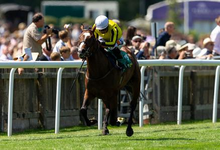 Pretty Pollyanna pencilled in for Moyglare assignment at the Curragh