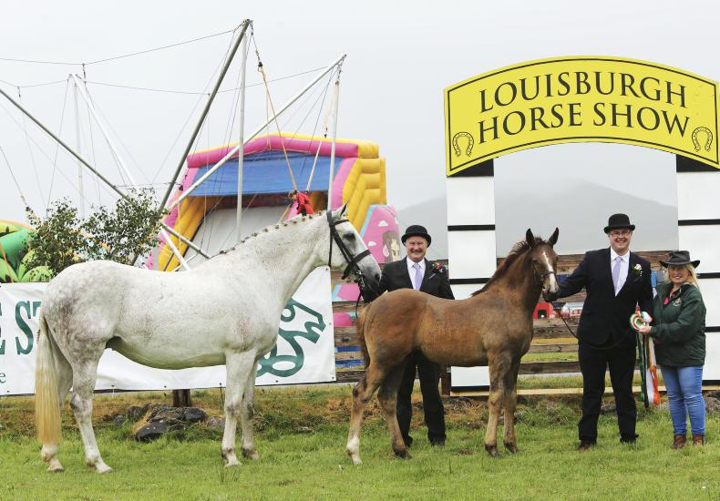 AROUND THE COUNTRY: DS Ballagh Bouncer crowned