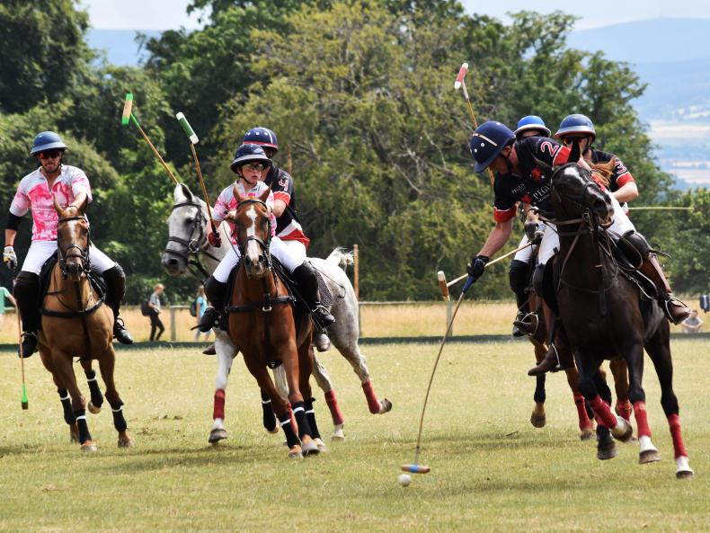 AROUND THE COUNTRY:  More polo players needed - Heffron