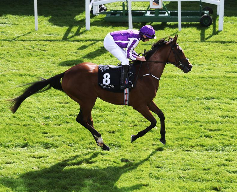 CURRAGH SUNDAY: Magical looking for second success