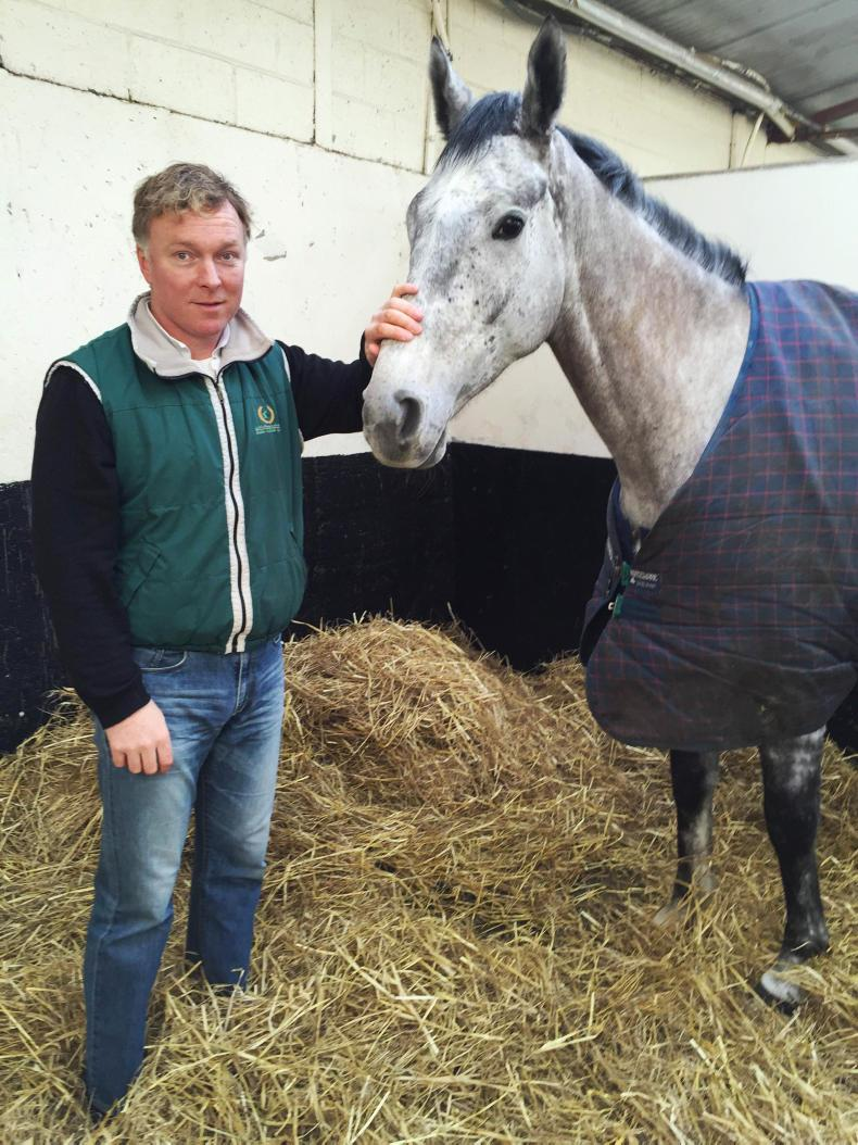 NEWS: Brennan cleared of Faugheen charges