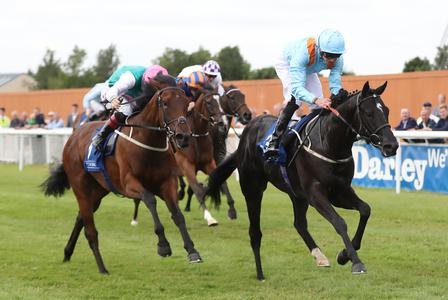 Marie's Diamond proves an Anglesey jewel at the Curragh