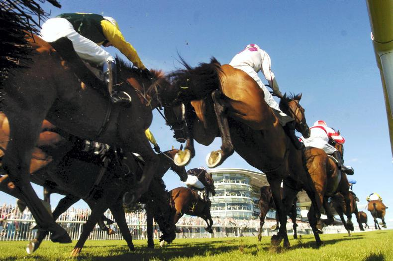 GALWAY RACES - The countdown to Galway is on