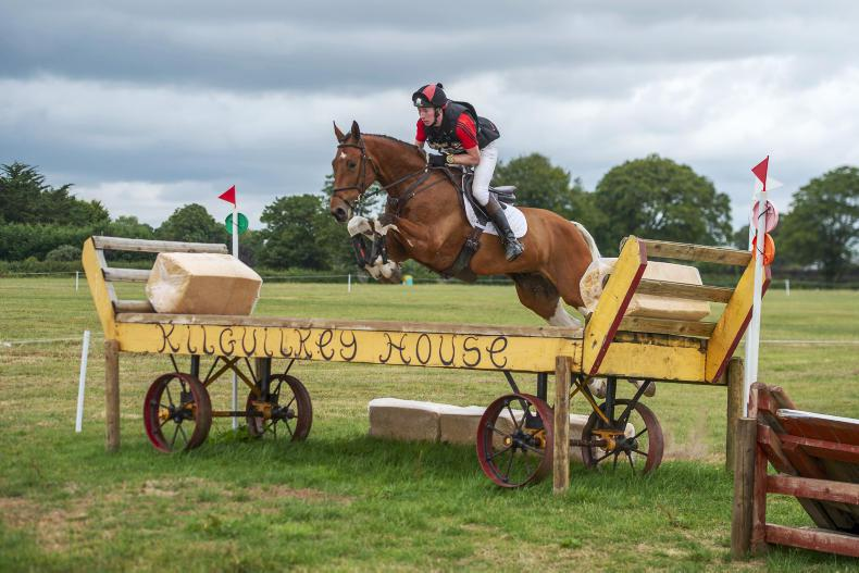 EVENTING:  Harrington clinches win with Tullabeg Vision