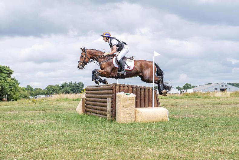 EVENTING:  Wilderwood Storm delivers for Swan