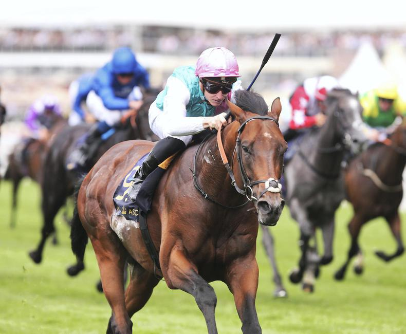 Expert Eye to be supplemented for Sussex Stakes at Goodwood