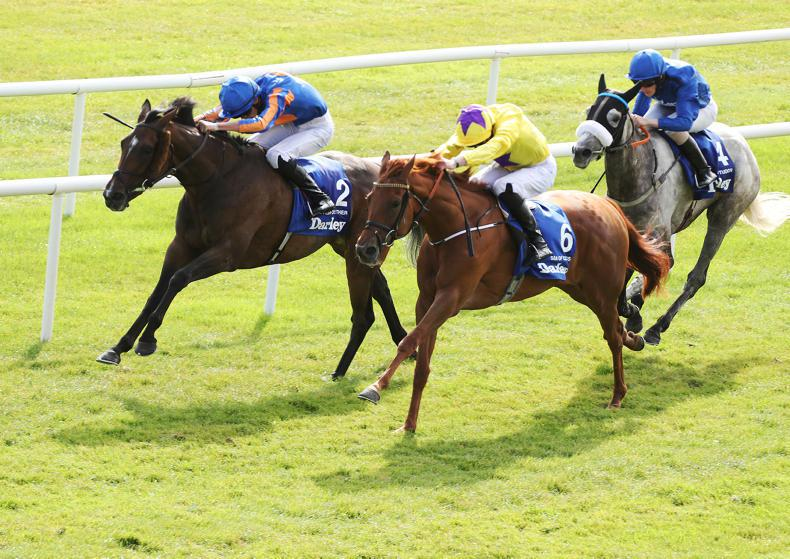 MONDAY OUTLOOK: Arc in the stars for Sea Of Class