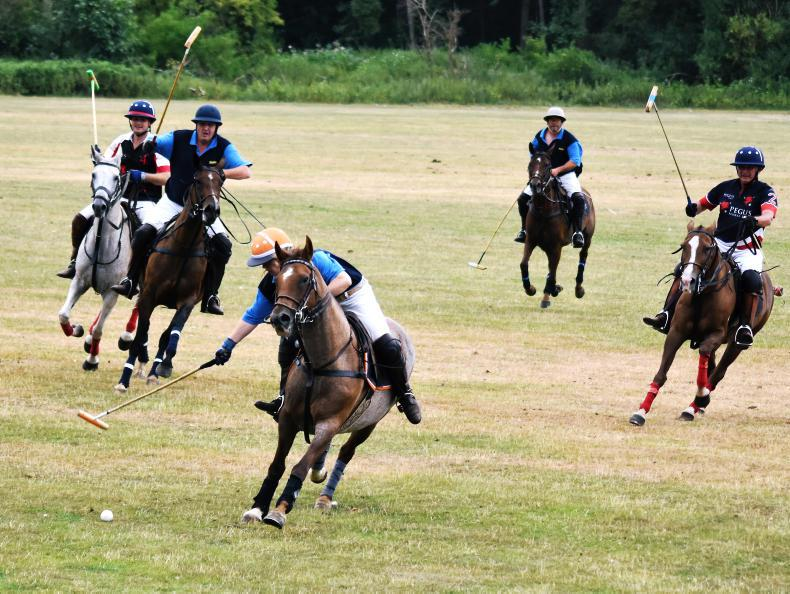 POLO:  Bunclody fades in Patrons Cup against Pegus