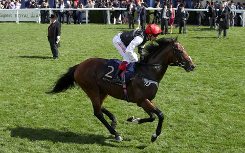 No rush to make plans for Cracksman after fast ground scuppers King George bid