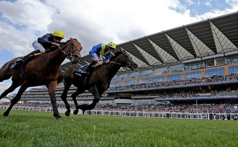 Poet's Word makes history for Sir Michael Stoute in pulsating King George