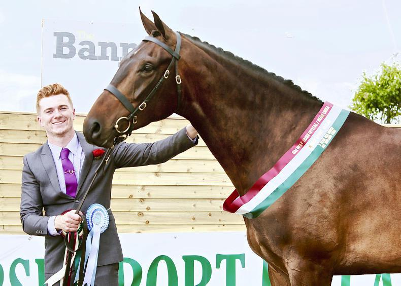 DUBLIN HORSE SHOW 2018:  Quality entries set to battle for top honours