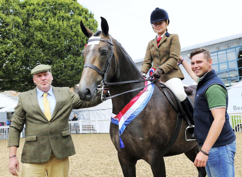 DUBLIN HORSE SHOW 2018:   Small hunters garners competitive entries