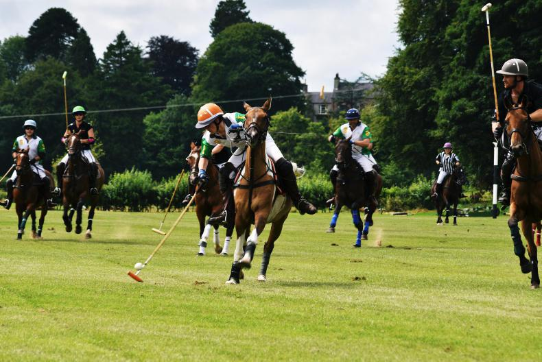 AROUND THE COUNTRY:  NI polo teams dominate tournaments