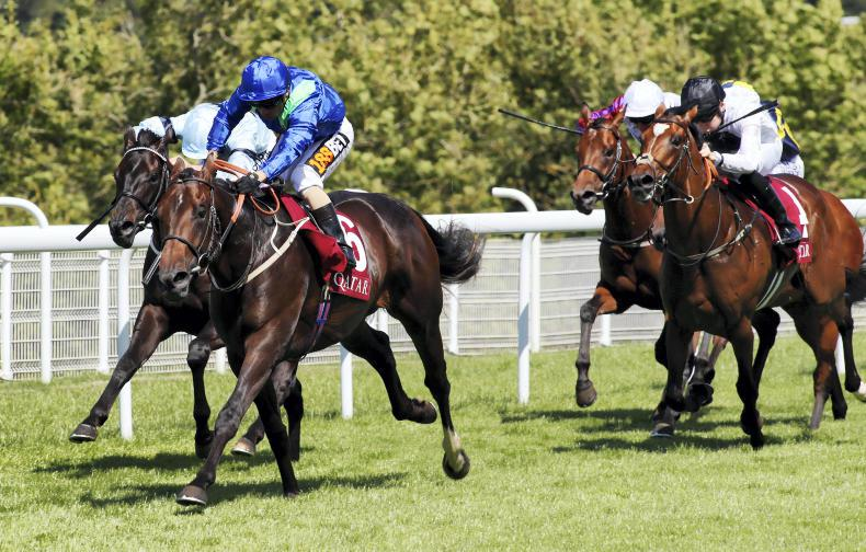 GOODWOOD TUESDAY: Last to first Dark Vision gets there