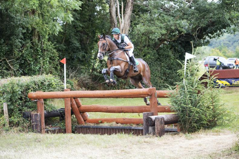EVENTING:  McCarthy lands narrow win with Mr Chunky