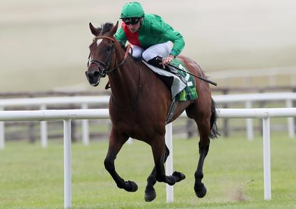 William Haggas hoping Urban Fox can cement her Group One status in Nassau test