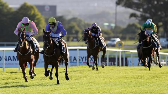 Limini makes quick return in Guinness Handicap at Galway