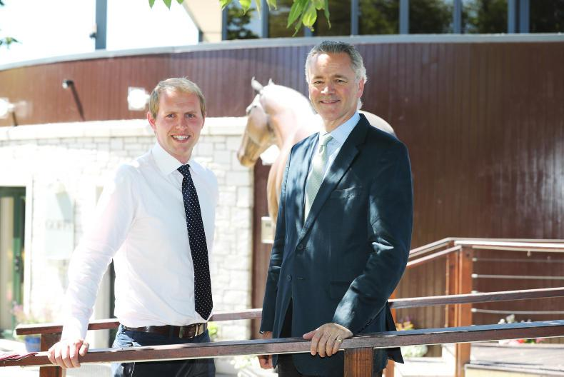 Tasty programme of racing as Goffs come to Cork