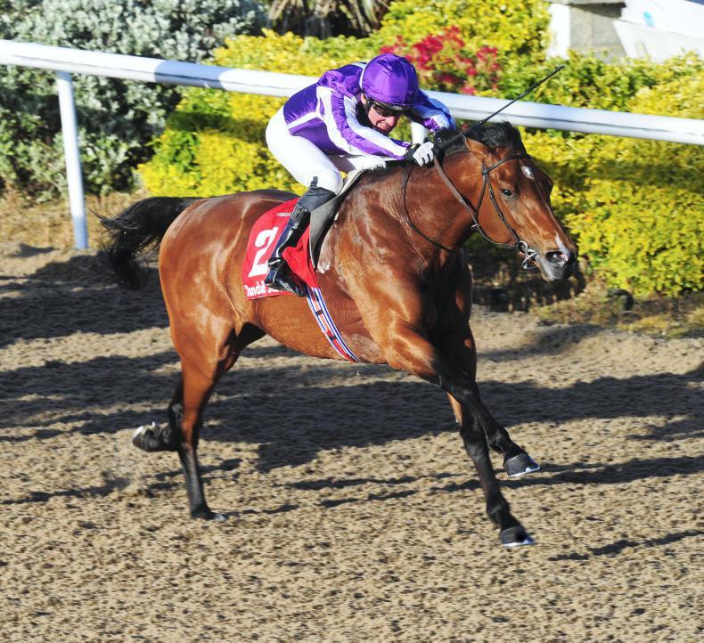 GALWAY SUNDAY PREVIEW: Bond Street looks attractive