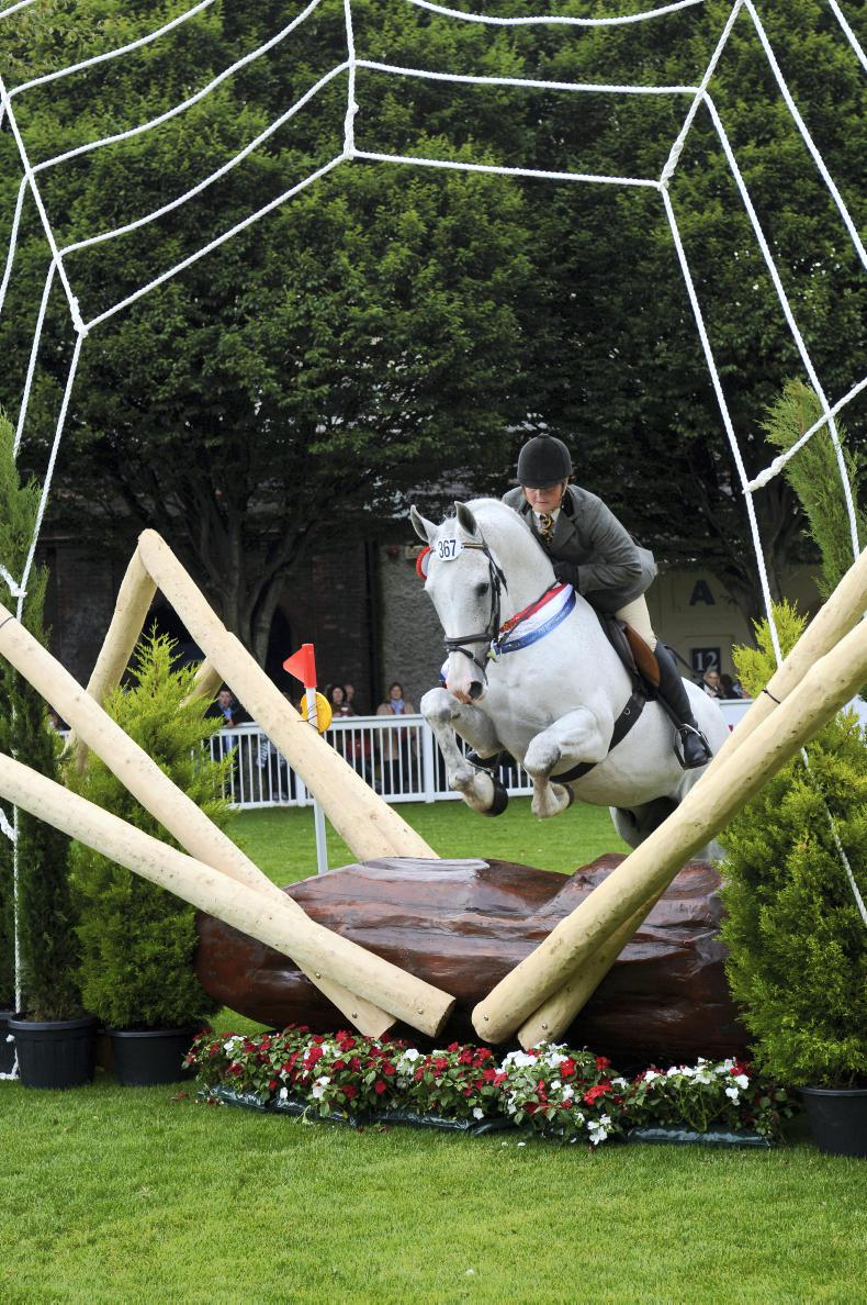 DUBLIN HORSE SHOW 2018: Youngsters out to depose former champions