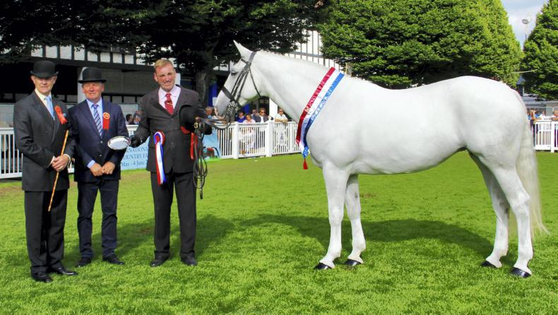DUBLIN HORSE SHOW 2018: Stage clear for new champions