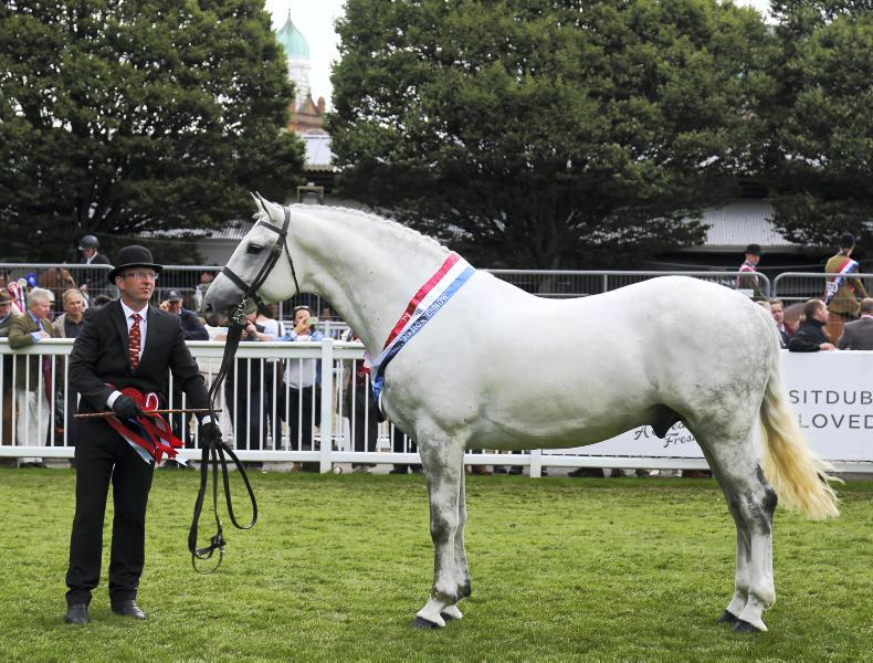 DUBLIN HORSE SHOW 2018: Past champions to vye for title