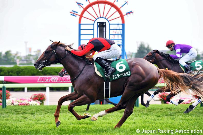 JAPAN: Milestone day for both owner and rider in Hakodate