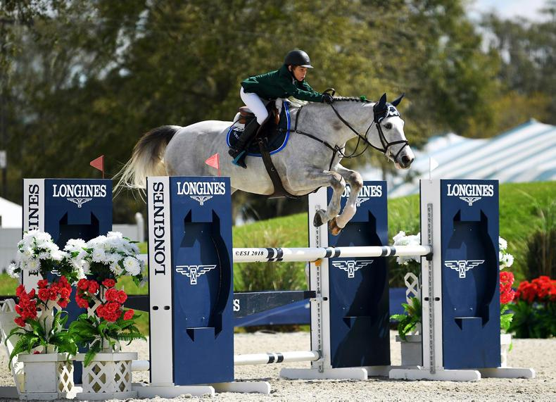 INTERNATIONAL: Kentucky win for Daniel Kerins