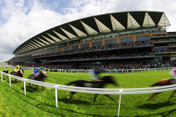 Foot and mouth begins Ascot's woes