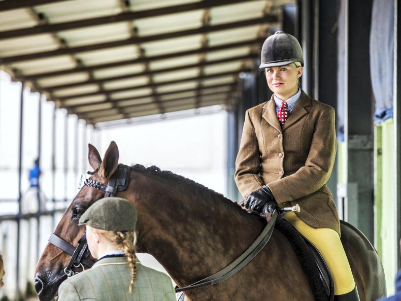 PHOTOS: Day 1 at the Dublin Horse Show