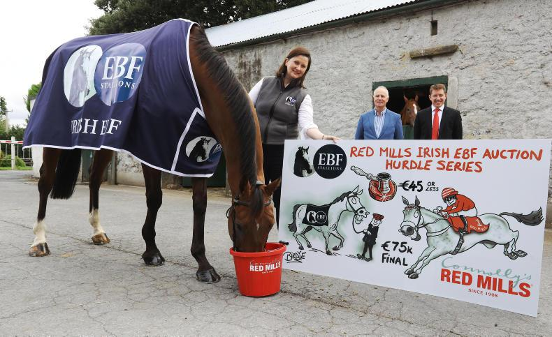Auction hurdle race series extended