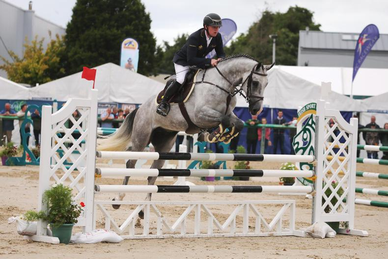 DUBLIN HORSE SHOW 2018: Top honours for JDP Dougland