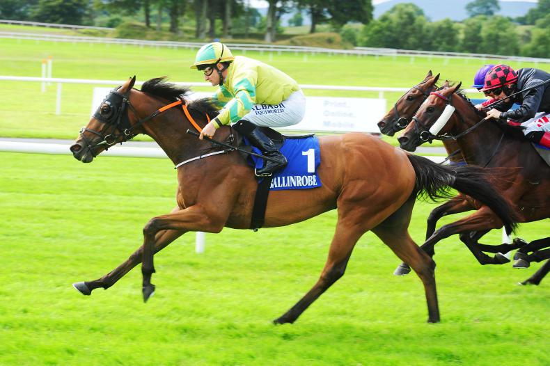 BALLINROBE MONDAY: Double for McGuinness on day cut short