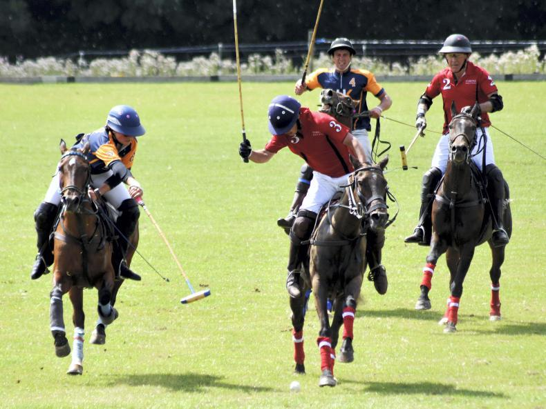 POLO:  Red hot final at Bunclody Polo Fest