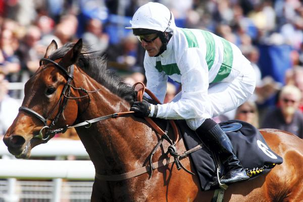 Breeding briefs from Champions Day