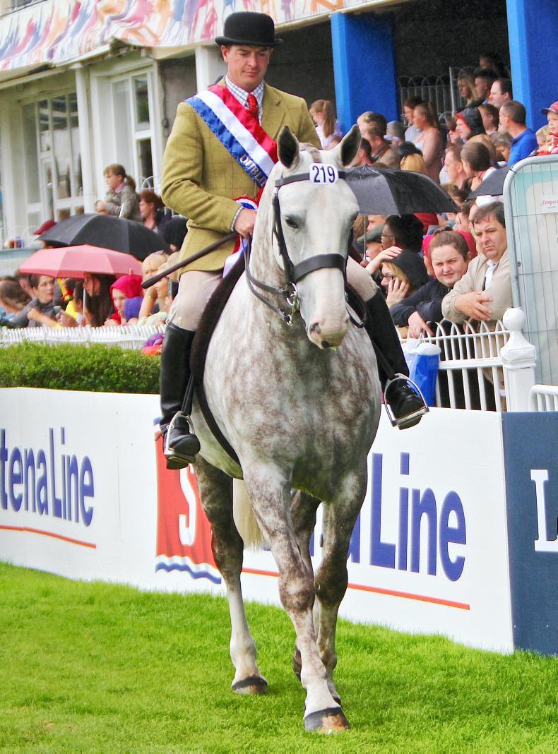 DUBLIN HORSE SHOW 2018: Murphy plays a Blinder at RDS