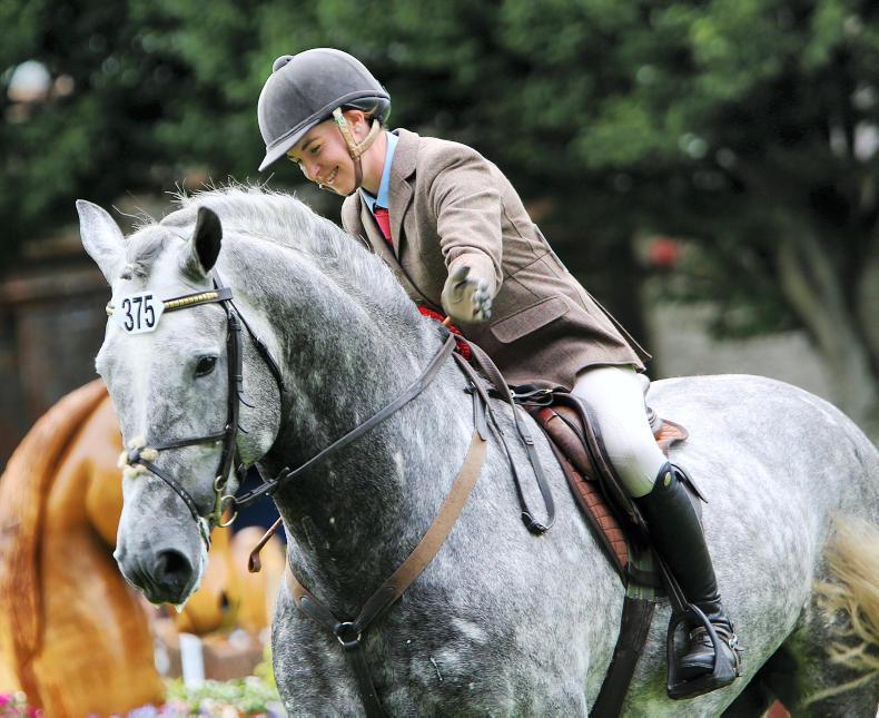 DUBLIN HORSE SHOW 2018:  Gortfree Lakeside Lad retains title