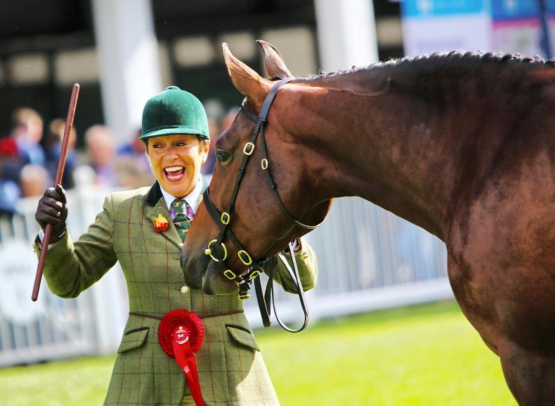 DUBLIN HORSE SHOW 2018:  Ballykelly Eva lives up to expectations