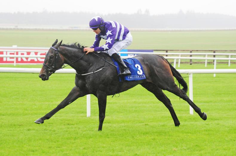 CURRAGH SUNDAY: Stunning victory for Lady Kaya