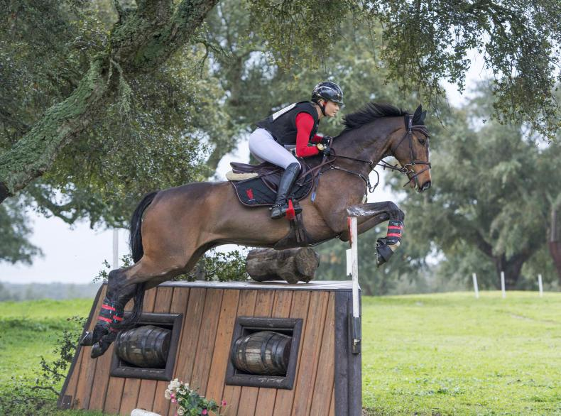 NEWS:  New ventures for River Lodge Equestrian